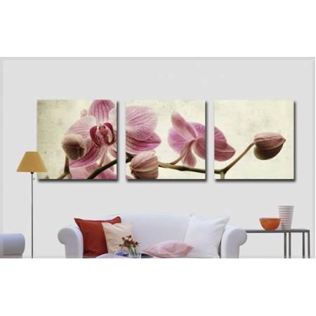 Картина по номерам Розовые орхидеи MS14067, Babylon