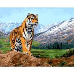 Тигр на фоне заснеженных гор
