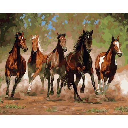 Картина по номерам «Лошади в каньоне худКаммингс Крис», модель VP469