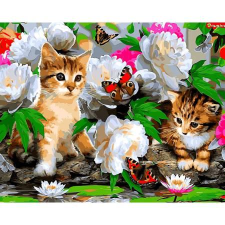 Картина по номерам «Милые котики», модель VP463