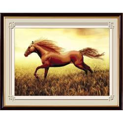 Вольная лошадь