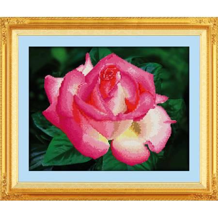 Картина по номерам Дикая роза (5D-008), Lasko