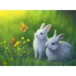 Алмазная вышивка - Кролики в траве