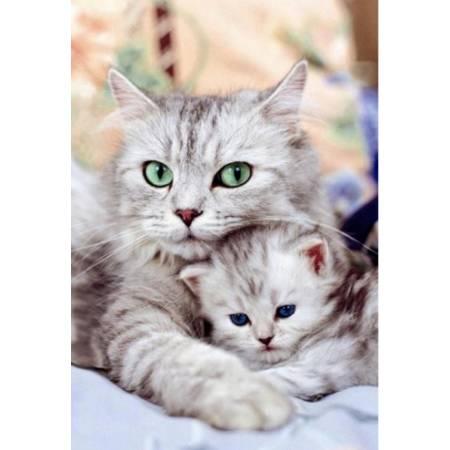 Кошка с котенком, FS037 - купить Рисование камнями ...
