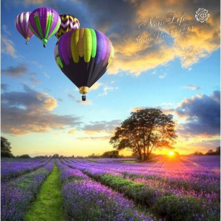 Пейзаж с воздушными шарами