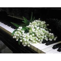 Алмазная выкладка - Цветы на клавишах рояля