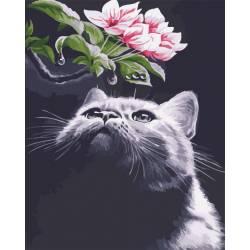 Кот и магнолия