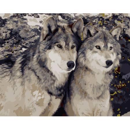 Картина по номерам «Преданность волка», модель AS0170