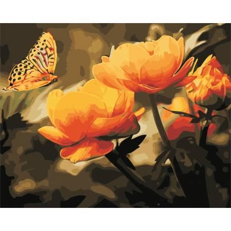 Картина по номерам «Желтые цветы и бабочка», модель AS0351