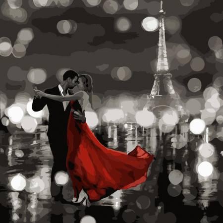 Картина по номерам «Ночное танго», модель AS0491