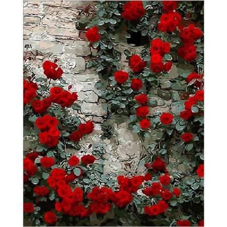 Картина по номерам Вьющаяся роза Q108, Mariposa