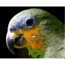 Мятный попугай