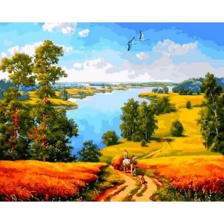 Картина по номерам Дорога среди полей Q2180, Mariposa
