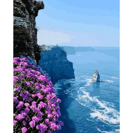 Картина по номерам Морские скалы Q2187, Mariposa