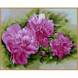 Розовые пионы, цветной холст