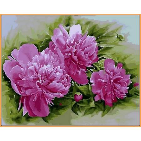 Картина по номерам Розовые пионы,, цветной холст NB2184R, Babylon Premium
