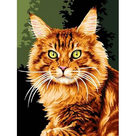 Картина по номерам «Норвежская кошка », модель vk176