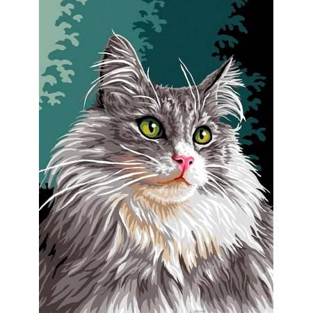 Картина по номерам Сибирская кошка vk177, Babylon