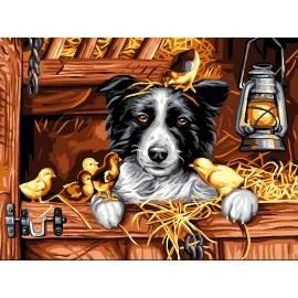 Пес с цыплятами
