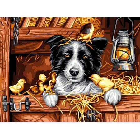 Картина по номерам «Пес с цыплятами », модель vk184