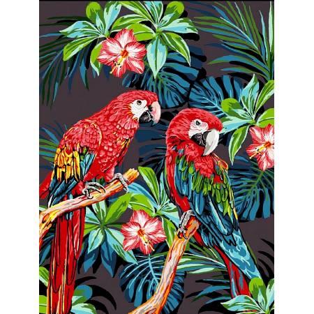 Картина по номерам Красочные попугаи VK186, Babylon