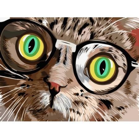 Картина по номерам Кот в очках VK210, Babylon