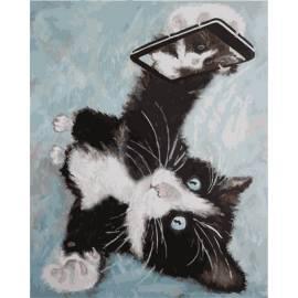 Кошачье селфи