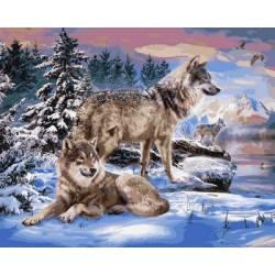 Волки на берегу реки