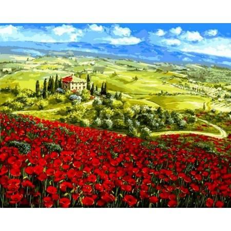 Картина по номерам «Маки Тосканы», модель VP1062