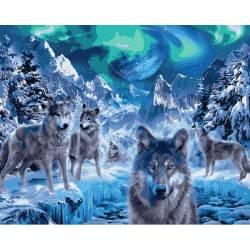 Волки и северное сияние