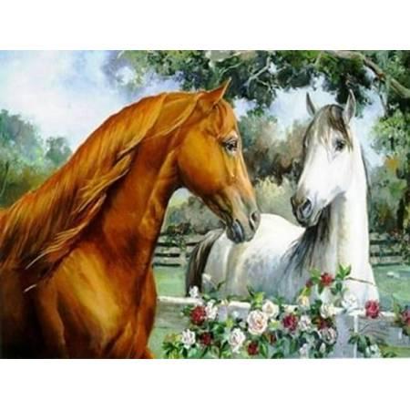Двое лошадей