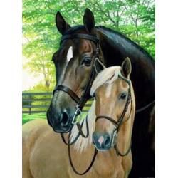 Пара лошадей