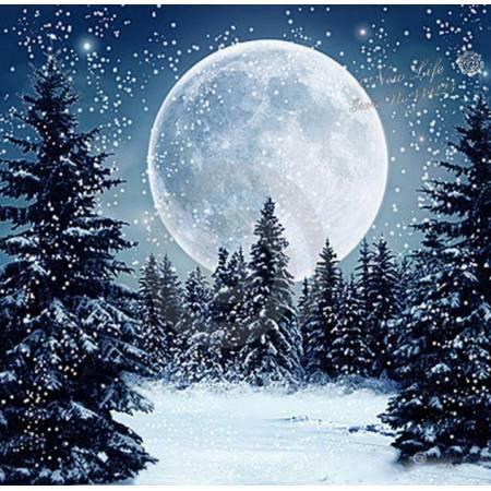 Луна в зимнем пейзаже