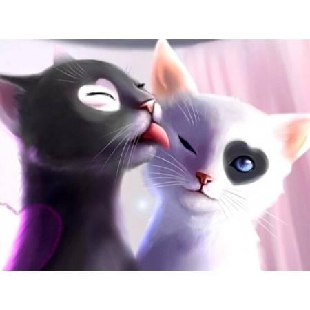Картина по номерам Ласковые котята  (TN212), DIY