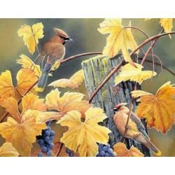 Алмазная выкладка - Две птицы на лозе винограда