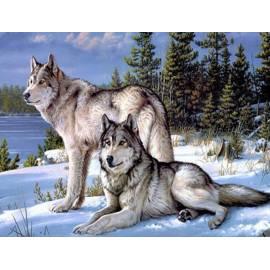 Волк и волчица - на подрамнике