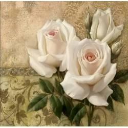 Нежно белые розы