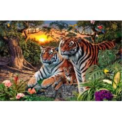 Тигры на закате