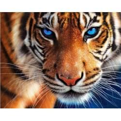 Могучий тигр