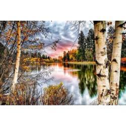 Закат у реки в лесу