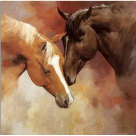 Алмазная вышивка - Благородные лошади