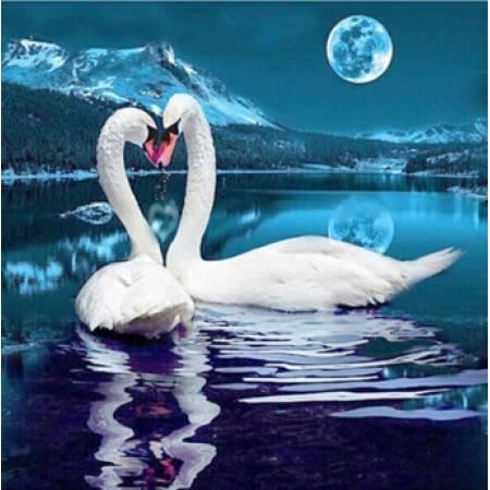 Картина по номерам Лебединая песня под луной (FS398), DIY