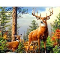 Пара оленей в лесу