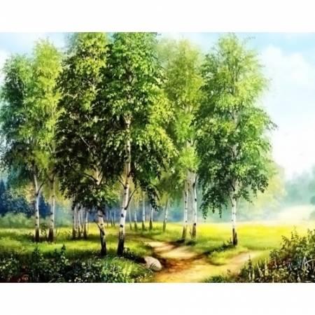 Берёзовая опушка леса