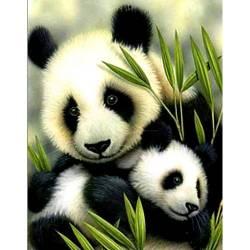 Милые панды