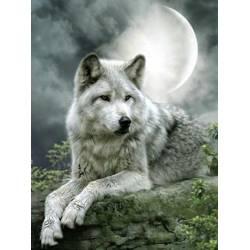 Волк под луной