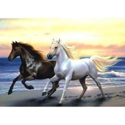 Лошади скачут с морским ветром