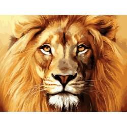 Лев - король зверей