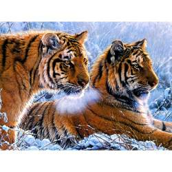 Тигры в зимнем лесу