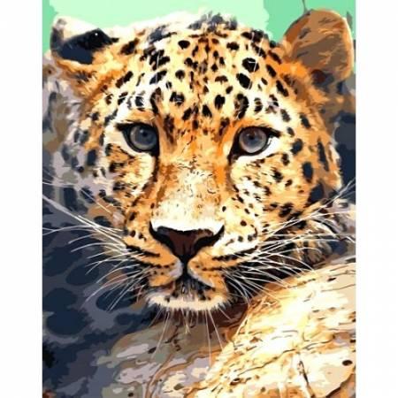 Картина по номерам Взгляд леопарда TN957, DIY